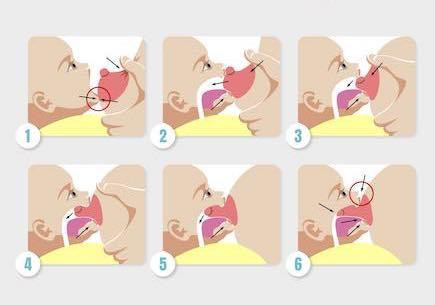 baby aanleggen borstvoeding